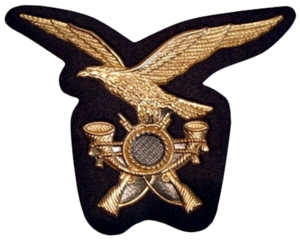 1st Alpini Regiment - Cap insignia of the Alpini.