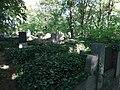 Friedhof harsleben 2019-06-28 (3).jpg