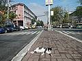 FvfMendiolaStreet691.JPG