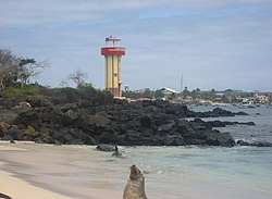 The shoreline of Puerto Baquerizo with a sea lion in the foreground