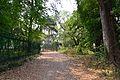 Gate - Roxburgh Building - Debabrata Avenue - Indian Botanic Garden - Howrah 2013-03-31 5740.JPG