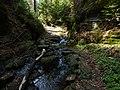 Gelobtbachtal, údolí Klopotského potoka - panoramio (41).jpg