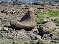 Giant's Causeway Felsen Nordirland@20160529.jpg