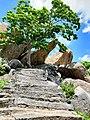 Gingee Fort Villupuram Tamil Nadu 20181001 122226.jpg