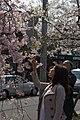 Ginkakuji 2009-04-08 (3634776914).jpg
