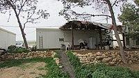 GivatSalit1381.JPG