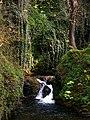 Glen Maye - geograph.org.uk - 773800.jpg