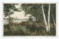 Glimpse of Onota Lake, Pittsfield, Mass (NYPL b12647398-75748).tiff