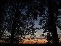 Gmina Lelis, Poland - panoramio (4).jpg