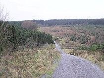 Gortin Glen Forest Park - geograph.org.uk - 112725.jpg