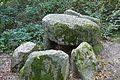 Grabhügel in den Hademarscher Bergen NIK 4235.JPG