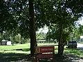Greer Park, Valdosta.jpg