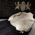 Gustav II Adolfs svepkläder. Bild tagen i utställningsmontern i rum A med antedendiet i bakgrunden - Livrustkammaren - 57745.tiff