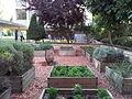 HUJI VIEW 20120912 155509.jpg