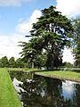 Hampton Court Palace (3037000259).jpg