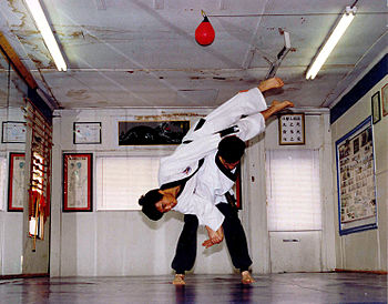 Hapkido students practice throws and joint man...
