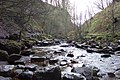 Hardraw Beck below Hardraw Force - geograph.org.uk - 278962.jpg