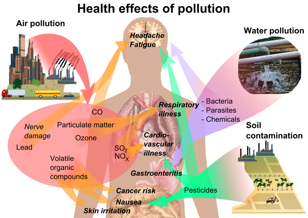 Image result for A Peek at Air Pollution and Human Health