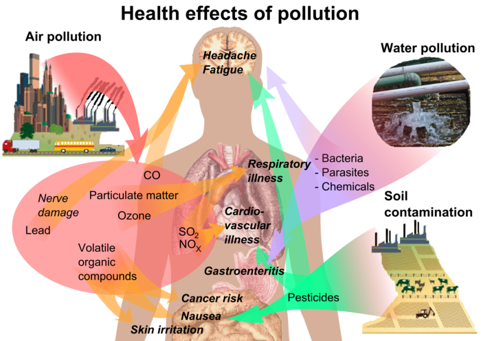 Health effects of pollution image