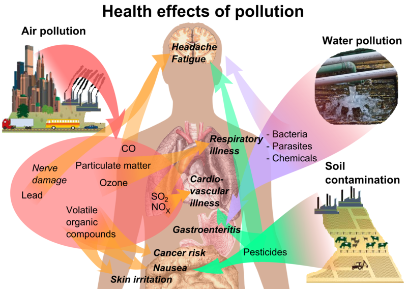 File:Health effects of pollution.png
