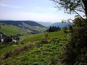 Martin Heidegger Blick von seiner Hütte über d...