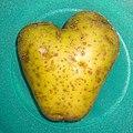 Herzhafte Kartoffel - 161001 (29823382464).jpg