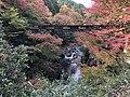 Het Kōchi-ravijn en de rivier de Anō in herfstkleuren, -16 november 2018.jpg