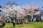 High Park, Toronto DSC 0176 (17207570689).jpg