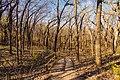 Hiking Trail - Kilen Woods State Park, Minnesota (24938404628).jpg