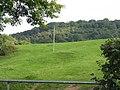 Hillside Off Netherton Road - geograph.org.uk - 1482889.jpg