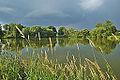 Horní rybník, Niva, okres Prostějov (05).jpg