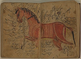 "Furusiyya - Illustration of a horse's ""good points"", 13th century manuscript of the Kitāb al-bayṭara by Aḥmad ibn ʿAtīq al-Azdī."