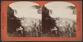 Horseshoe Fall and Biddle Stairs on line of Canada Southern R. R., by Barker, George, 1844-1894.png