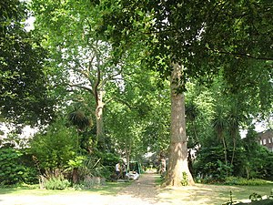 Hyde Park Square - Hyde Park Square