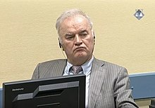 ICTY - The last trial – Ratko Mladić.jpg