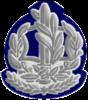 IDF RASAB Avir.png