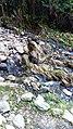 Ikogosi Warm water spring 14.jpg