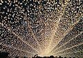 Illumination of Nabana no sato.JPG