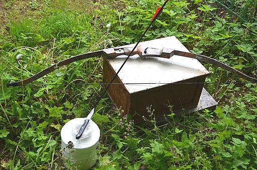 Imkerei schwarmfang bogen wenn schwarm zu hoch im baum lebenswertes chemnitz
