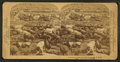 In the Great Union Stock Yards (stockyards), Chicago, U.S.A, from Robert N. Dennis collection of stereoscopic views 4.png