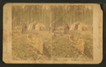 Indian tribe, Minnesota, by Union View Co..png