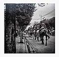 Intento de golpe de Estado en Argentina del 28 de septiembre de 1951-Haedo-caballos.jpg
