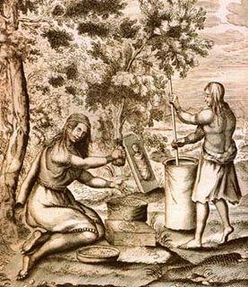 Economy of the Iroquois