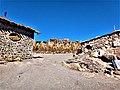 Isla Incahuasi Cactus Gigantes 06.jpg