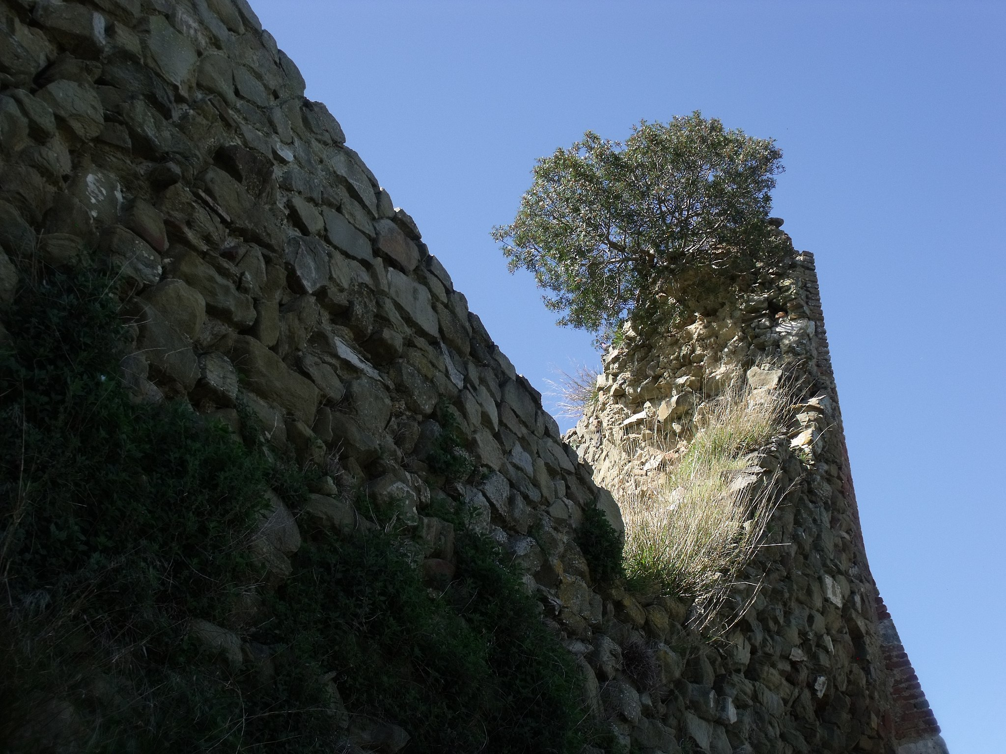 Istia d'Ombrone, La cinta muraria