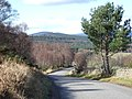 It is downhill from here - geograph.org.uk - 353419.jpg