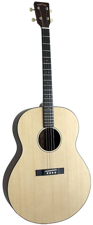 Tenor guitar - Modern acoustic tenor guitar from Gold Tone