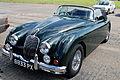 Jaguar (1243321302).jpg