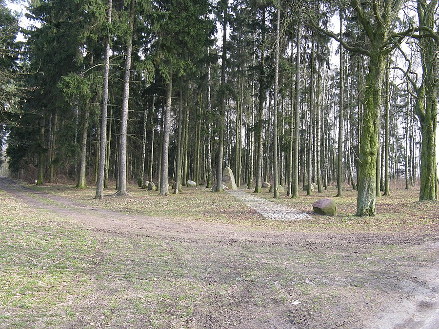 Janowo, Gmina Dominowo