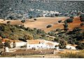 January Jerez Andaluz - Mythos Spain Photography 1989 - panoramio.jpg